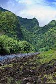 Tahiti.Tropical nature and mountain river.