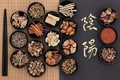 Chinese herbal medicine with yin and yang calligraphy script over bamboo. Translation reads as yin y