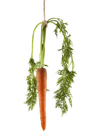 pic of dangling a carrot  - Carrot hanging on a string on a white background as a concept of motivation - JPG