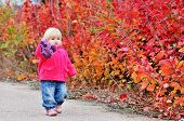 Toddler Walk Along Bushes