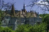 Palace in the Carpathians