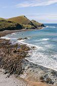 Coastline Near Crackington Haven In North Cornwall, Uk.  Cam Beak Headland.