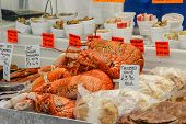 Lobster,crab And Other Shellfish And Seadfood For Sale On  A Fish Market Stall