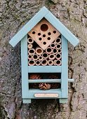 This Bee Box Protects Overwintering Solitary Bees.