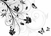 pic of floral design  - Floral ornament with butterfly - JPG