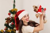Happy Woman In Santa Hat With Toy Terrier On Christmas Tree Background