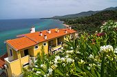 Houses surrounded by flowers on west coast of Thassos island