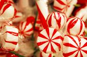 Christmas background with red and white
