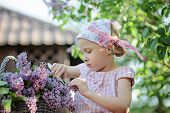 Cute little girl cutting lilacs in spring garden
