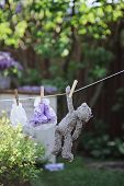 Toy dresses and teddy bear drying on rope in the garden