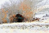 an old barn surrounded by trees