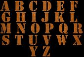 Alphabet Of Material