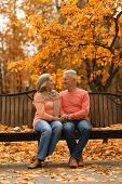 Mature couple sitting in the park