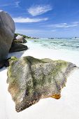 Granite And Beach, La Digue, Seychelles
