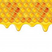 Honeycombs With Honey Vector Background