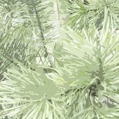 Spruce trace background.