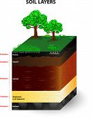 stock photo of horizon  - Soil Formation and Soil Horizons - JPG