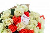 Roses With Gratitude