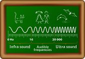 The sound waves vector diagram