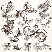 Set Of Vector Calligraphic Elements In Vintage Style For Design