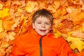 Close up view of happy boy laying on autumn leaves