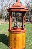 foto of wishing-well  - A light grey tabby cat sitting in the bucket of a decorative wishing well - JPG