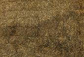 foto of hay bale  - Stack of golden Hay bale background image - JPG