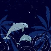 foto of dolphin  - travel vector illustration with dolphins palms and Southern Cross - JPG
