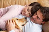 Retrato de casal relaxa no sofá com o cachorro de estimação em casa