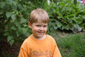 Portrait Of A Three Year Old Boy