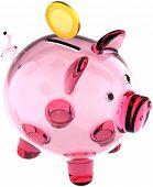 Glass piggy bank translucent