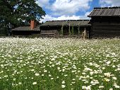Skansen_Farmstead6