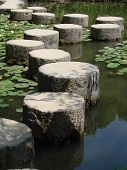 stock photo of stepping stones  - Stepping stones through water garden at shrine Kyoto - JPG