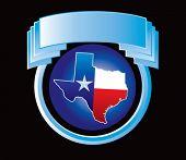 lonestar state icon on blue crest