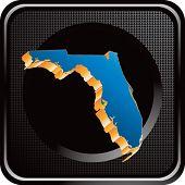 forma de estado de Florida no botão preto web