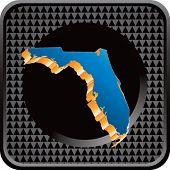 forma de estado de Florida no ícone web quadriculada