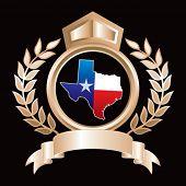 texas lonestar state on royal crest