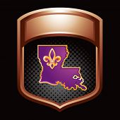louisiana state badge