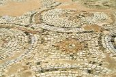 Ancient Mosaic In Kourion, Cyprus