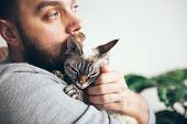 Muzzle Of A Cat And A Beard Mans Face. Close-up Of Handsome Young Man And Tabby Kitten. The Devon Re poster