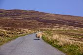 Straße auf Isle Of skye