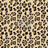 Leopard Seamless Pattern. Animal Print. Vector Background.animal Skin, Tiger Stripes, Abstract Patte poster