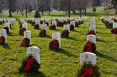 Xmas Wreaths In Arlington Cemetery