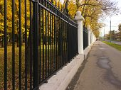 City Decorative Metal Fence In A Public Autumn Park. Alley With Yellow Foliage On Trees Along The Au poster