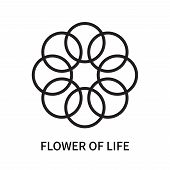 Flower Of Life Icon Isolated On White Background. Flower Of Life Icon Simple Sign. Flower Of Life Ic poster