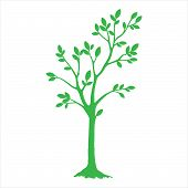 Green Silhouette Tree With Leaves. Tree Icon Silhouette   Isolated On White Background. Tree Icon Si poster