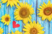 Autumn Background With Sunflowers On Wooden Board. Yellow Fresh Sunflowers On Rustic Wooden Table Ba poster