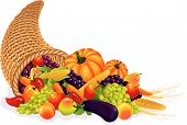 stock photo of cornucopia  - Vector illustration  - JPG