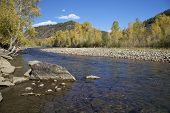 Dolores Río Colorado en otoño
