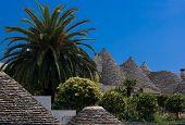 Trulli In Alberobello, Apulia (italy)